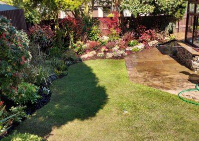 Beautiful garden planted with Italian & Dutch specimen plants 1
