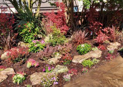 Beautiful garden planted with Italian & Dutch specimen plants 2