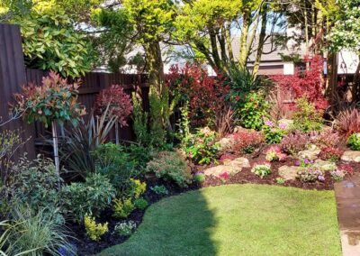 Beautiful garden planted with Italian & Dutch specimen plants 4