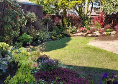 Beautiful garden planted with Italian & Dutch specimen plants 6