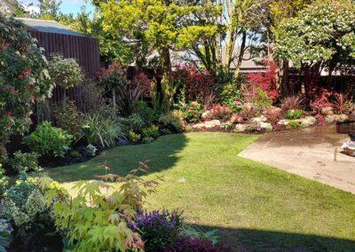Beautiful garden planted with Italian & Dutch specimen plants 7