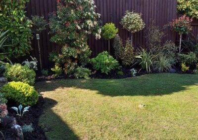 Beautiful garden planted with Italian & Dutch specimen plants 8
